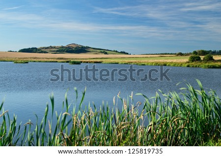 The pond in the meadow, cornfield in the background and the Mountain