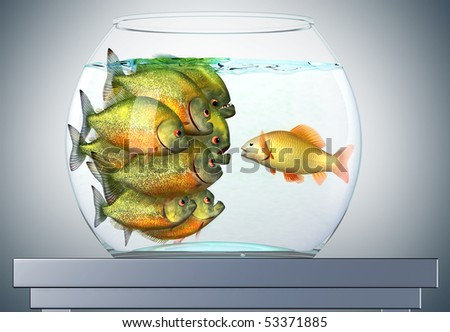 The Power of Persuasion, goldfish and piranhas