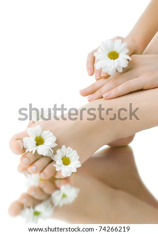 the pretty female legs with fowers, on white background, isolated, close up