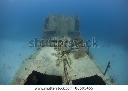 The Prince Albert wreck off the island of Roatan, Honduras.