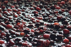 The process of  berry wort fermentation for making wine