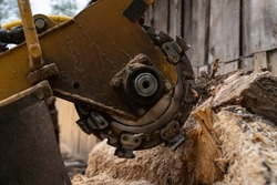 The process of removing a tree stump where the rotating head of the stump cutter grinds a freshly sawn stump.  The shredding disc is stiffened when you can see the blades splitting the stump