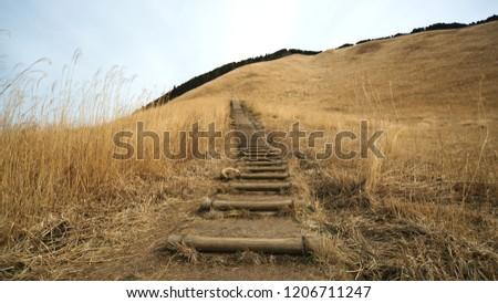 The promenade of the Soni plateau of winter desolation