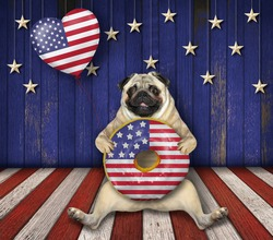 The pug dog patriot is sitting with a big american donut and a heart shaped balloon with usa flag design on a decorated wooden stage.