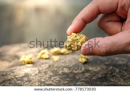 The pure gold ore found in the mine is in the hands of men