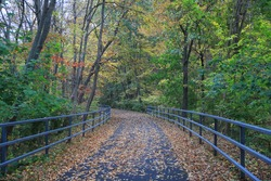 The Putnam Trailway glows in the colors of fall in Carmel, N.Y.