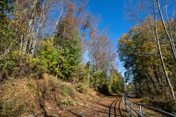 The Putnam Trailway glows in the colors of fall in Putnam County, N.Y.