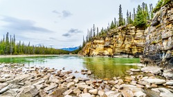 The quiet turquoise water of the Athabasca river right after the Athabasca Falls in Jasper National Park, Alberta, Canada