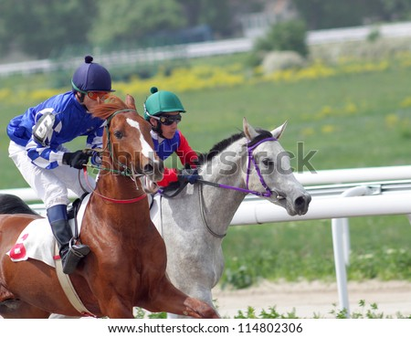 The race for the prize of the Spring,Northern Caucasus.