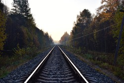 The railway passes through the autumn forest