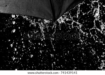 The rain from the umbrella, black and white image, Selective focus. #741439141