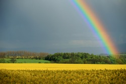 The rainbow over the rape field near Golden Mountains (Sudetes) in Lower Silesia (Poland)