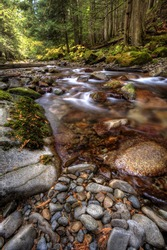 The rapid movement of a swift mountain stream.