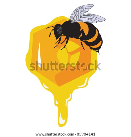 the raster bees and honeycomb with honey
