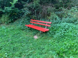 The red bench in the forest