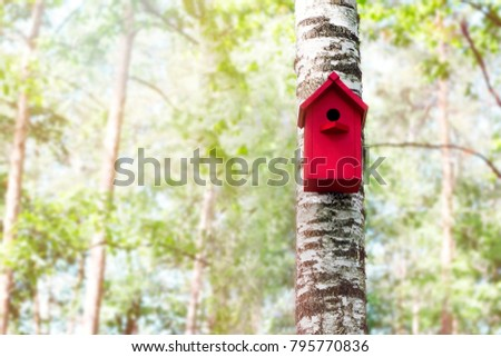 The red birdhouse on a tree in spring forest
