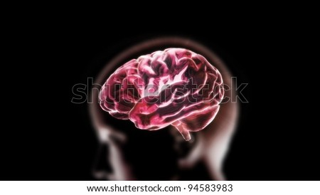 the red crystal brain render for medical and biology concept