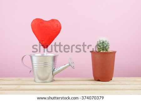 The red foiled chocolate heart stick with small silver watering can and little green cactus in small brown plant pot for Valentine's day.