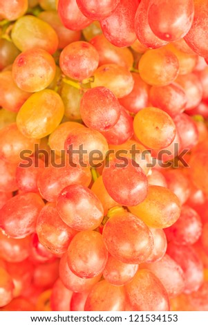 The red grapes,Can use background