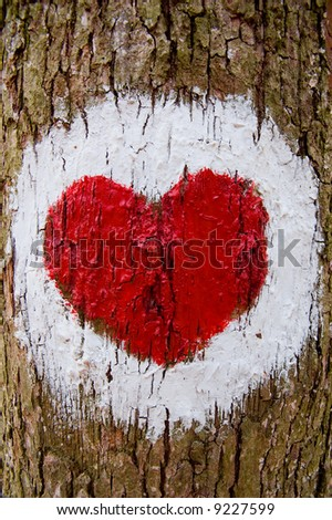The red heart draw on the crust tree