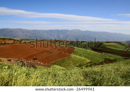 The Red Soil of Dongchuan