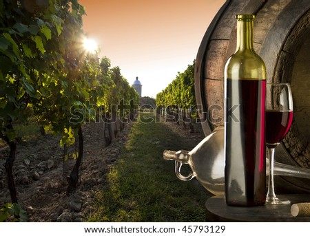 The red wine with vineyard