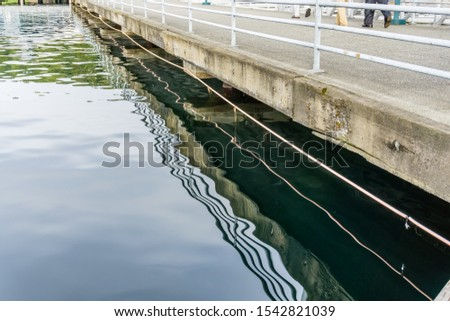 The reflection of lone of a pier are reflected in the water. #1542821039