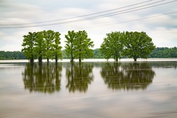 The reflection of the green trees in the water in Missouri at the flood of 2019