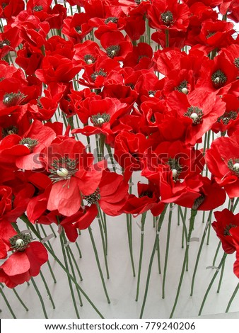 Free photos remembrance poppy avopix the remembrance poppy is an artificail flower to commemorate military personnel who have died in war mightylinksfo
