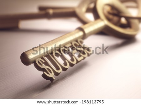 The right key to success. Depth of field in the word success, focusing on just the dollar sign.