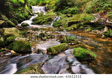 The river Bear Creek in the national park Krkonose in the Czech Republic
