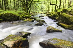 The river Fowey flowing through ancient woodland at Golitha Falls on the southern edge of Bodmin Moor in Cornwall.