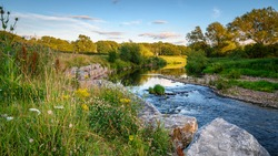 The River Wear Wildflower Riverbank, at Bishop Auckland, known as the gateway to Weardale and is a Market Town in County Durham
