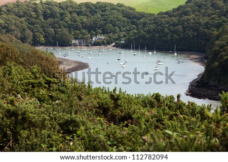 The river Yealm in South Devon, UK surrounded by summer trees.