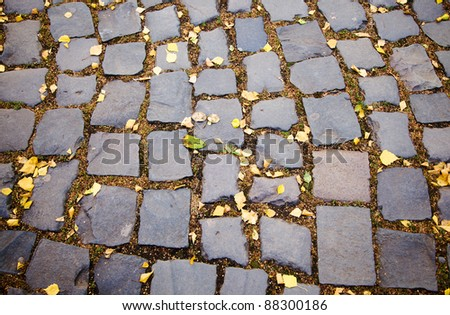The road combined from square cobble-stones (a road part, an autumn season)