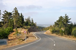 The road in the forest in Pichilemu, Chile, Southamerica