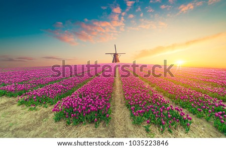 The road leading to the Dutch windmills from the canal in Rotterdam. Holland. Netherlands Stock photo ©