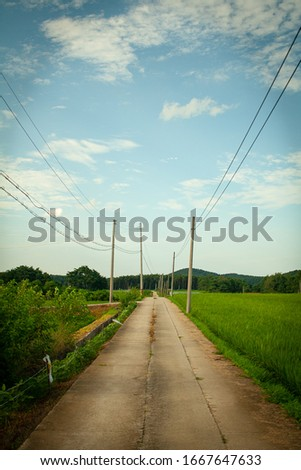 The road of countryside in South Korea. I think it is compared to countryside road in America. The road in this photo looks really narrow and small but you can see human affection of Korea countryside
