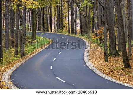 The road through the autumnal park