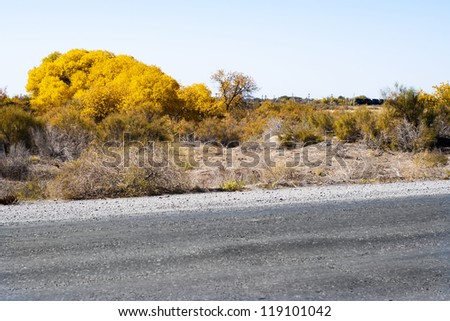 The road through the steppe. Way in asia.Autumn.