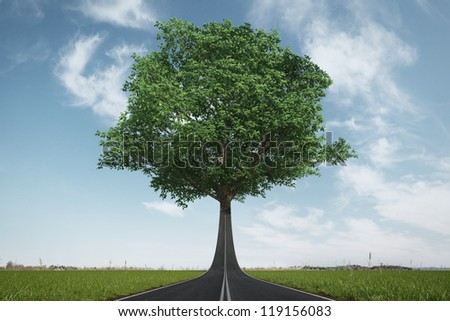The road turns into a tree. Ecology concept