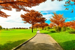The road way for golf cart and golfer  in golf course with green grass ,blue sky white clouds background and tree color in autumn season