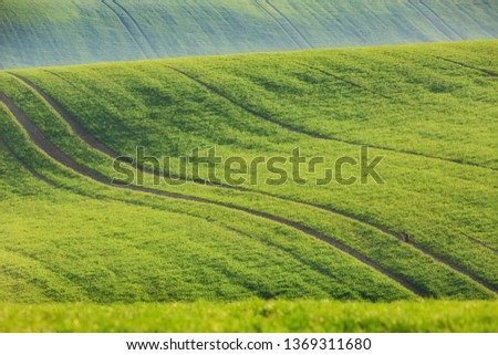 the rolling green  agricultural hills of Moravia Czech Republic in spring #1369311680