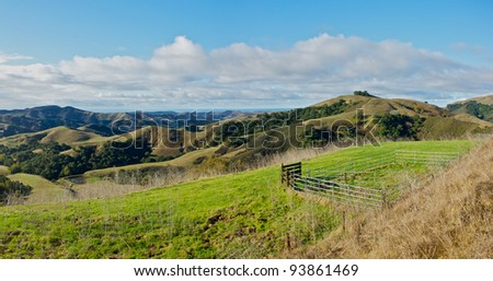 The rolling hills of California above Moro Bay.