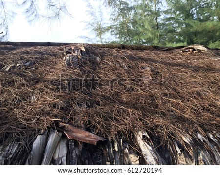 The roof from leaf #612720194