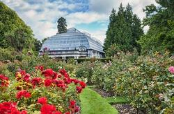 The Rose Garden and Cunningham House, the conservatory, Christchurch Botanical Gardens, Hagley Park, Christchurch, New Zealand.