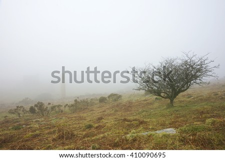 The rugged beauty of Bodmin Moor with a gnarled old Hawthorn tree, the ruins of Holman's Engine house at South Caradon Mine surrounded but just visible with an early morning fog Cornwall, England, U K Stock fotó ©