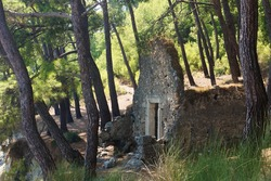 The ruins of an ancient building among pines in the city of Faselis in the south of Turkey
