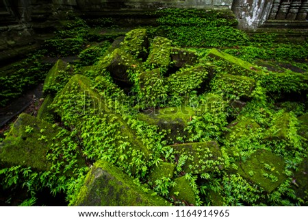 The ruins of Khmer castle in the rainy season are green with moss and lichen. #1164914965