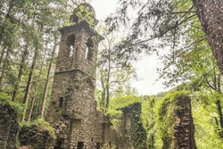 The ruins of San Martino di Licciorno (Genova, Italy). A medieval church abandoned in a forest.